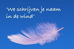 Gerard Pillen naam in de wind